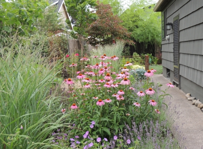 The side yard combines perennials with raised vegetable beds